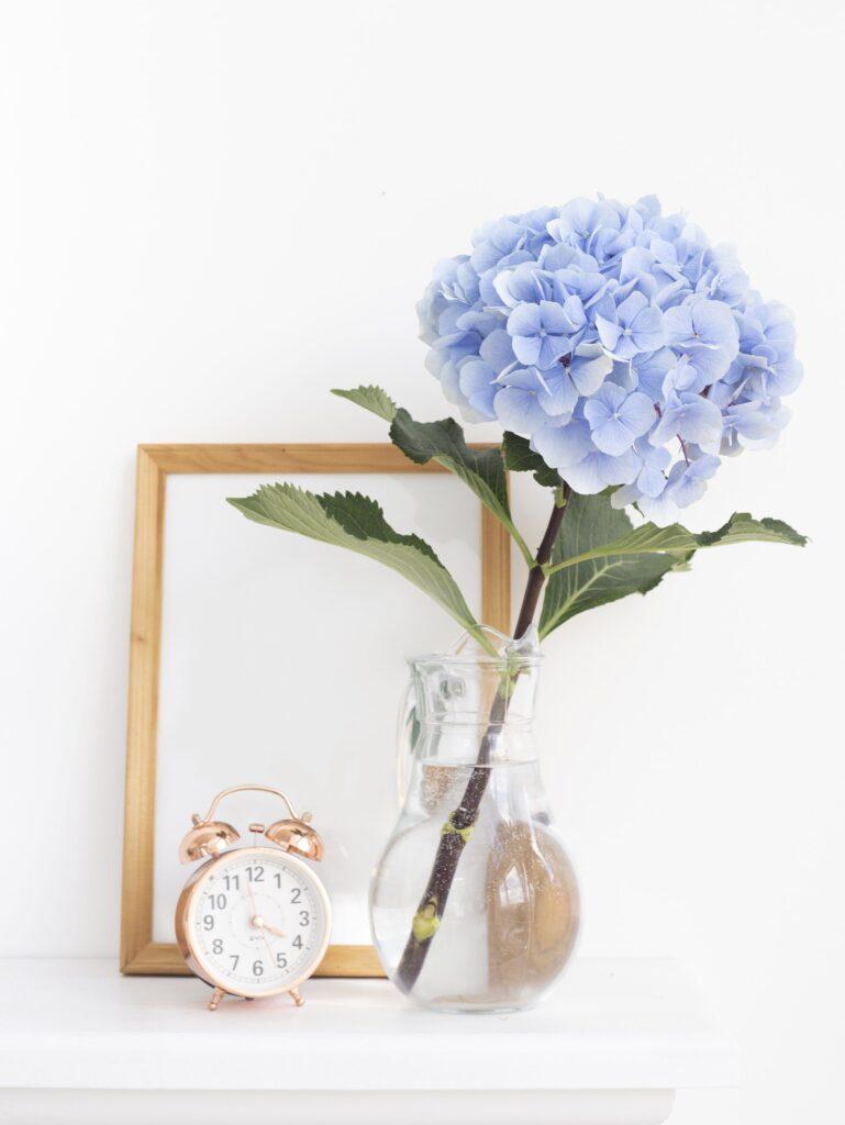 ดอกไม้เสริมดวงการงาน ไฮเดรนเยียร์