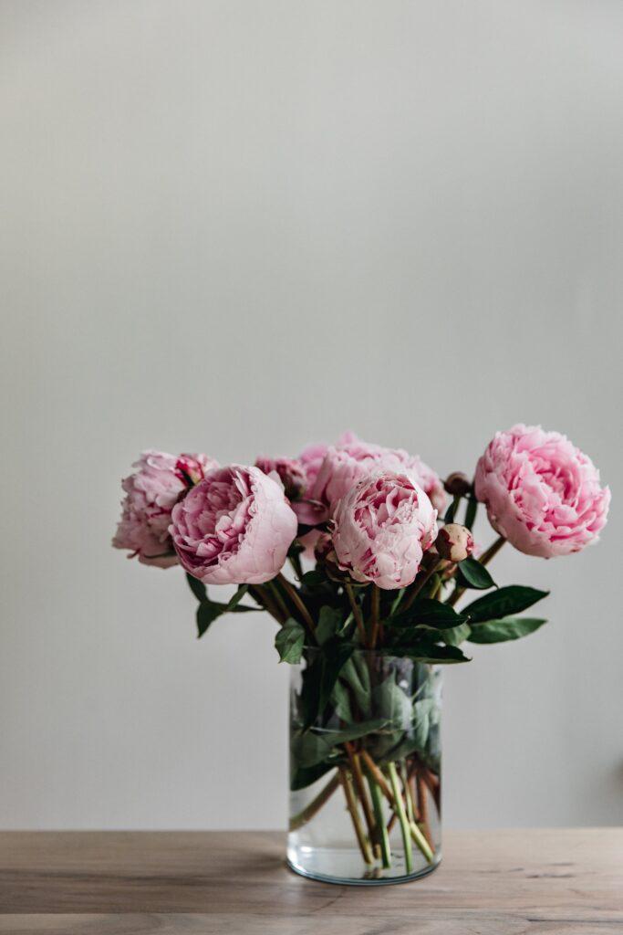 ดอกไม้แต่งบ้าน โบตั๋น